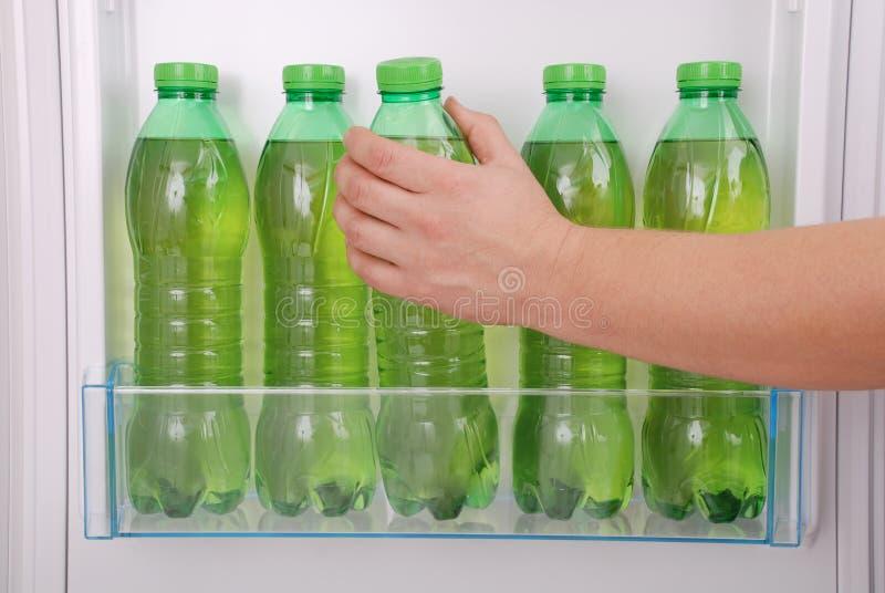 Kühles Kräutergetränk in der Plastikflasche stockfotos