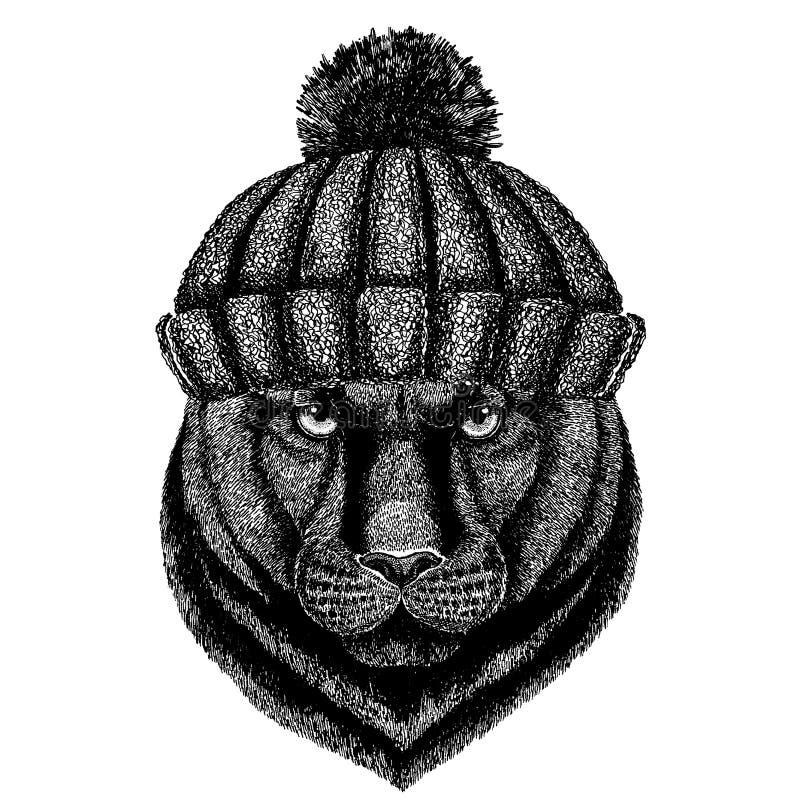 Kühles Tier der Panther-Puma-Puma-Wildkatze, das gestrickten Winterhut trägt Warme Kopfschmuck Beanie Weihnachtskappe für Tätowie stock abbildung