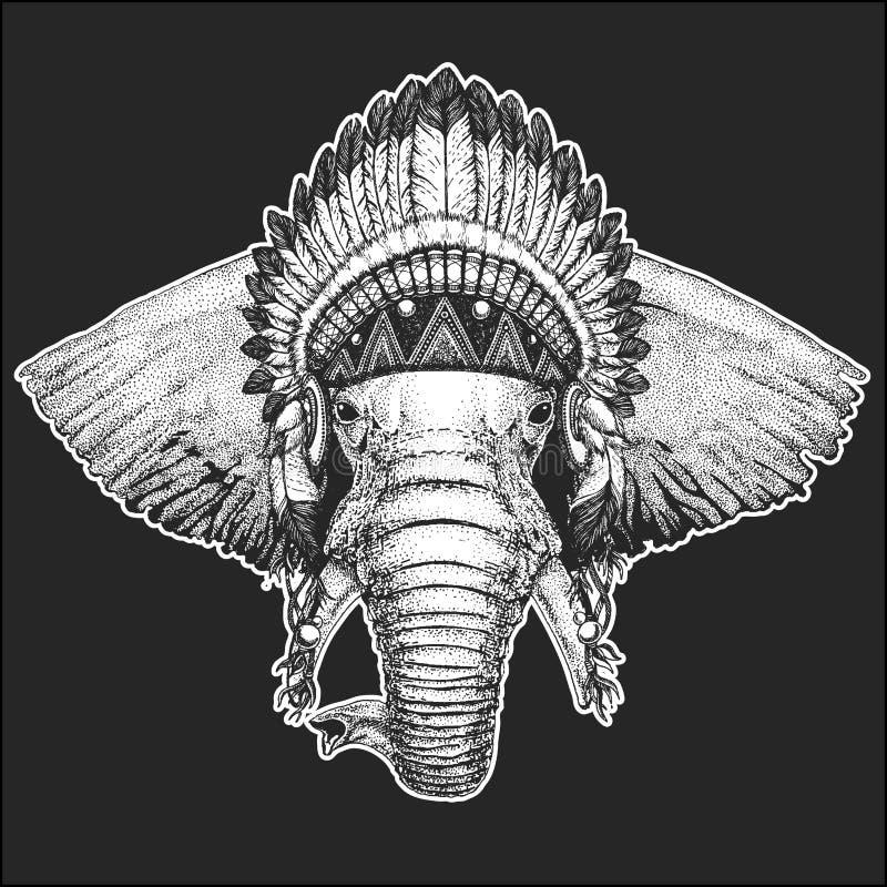 Kühles Tier des afrikanischen oder indischen Elefanten, das gebürtigen indianischen Kopfschmuck mit schicker Art Federn Boho Hand stock abbildung