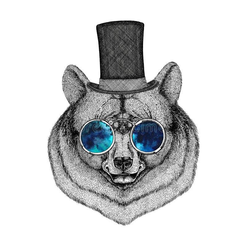 Kühles und modernes schwarzer Bär Weinleseart Stich-Bild für Tätowierung, Logo, Emblem, Ausweisdesign stock abbildung