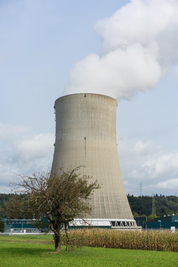 Kühlvorrichtungskamin des Atomkraftwerks mit Baum in der vorderen Verschmutzungsnatur lizenzfreies stockbild
