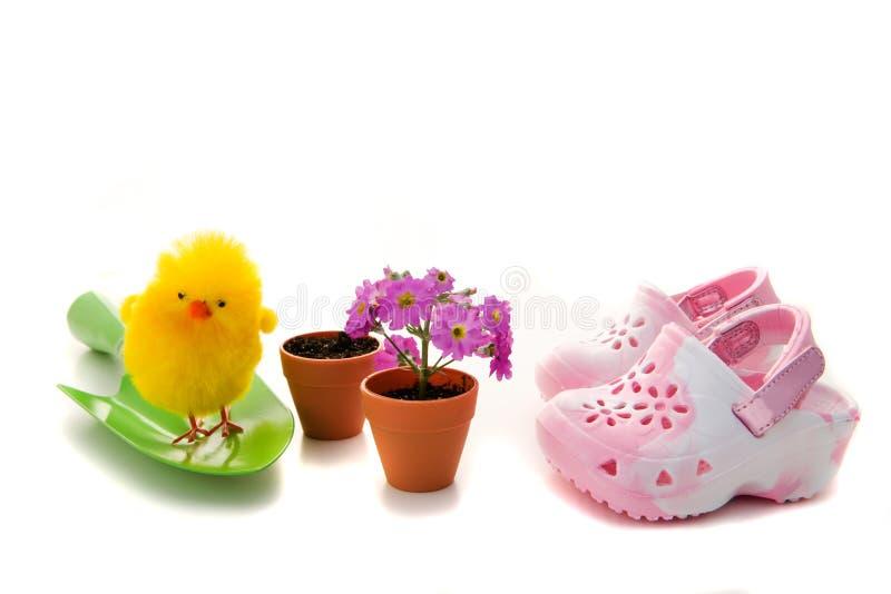 Küken, Blumen und Schuhe stockfotografie