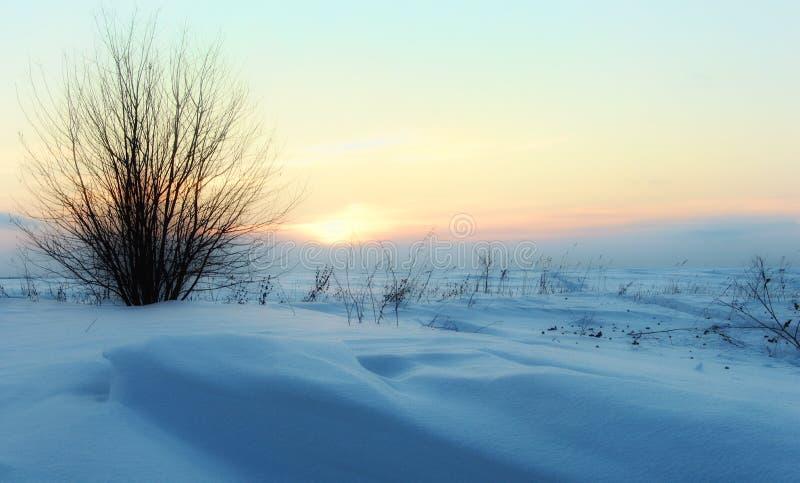 Kümmern Sie sich um Natur Nach einem Schneesturm stockfoto