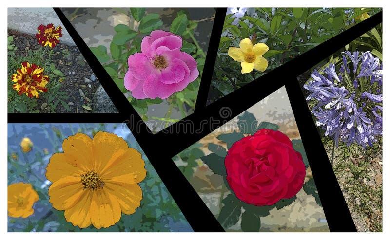 Künstlerische Illustration in Form von Porträt, den Blumen und ihren Farben vektor abbildung