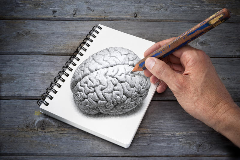 Künstlerische Zeichnungs-Gehirn-Kreativität lizenzfreie stockbilder