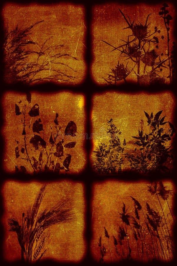 Künstlerischer stilvoller Hintergrund der Weinlese lizenzfreie stockbilder