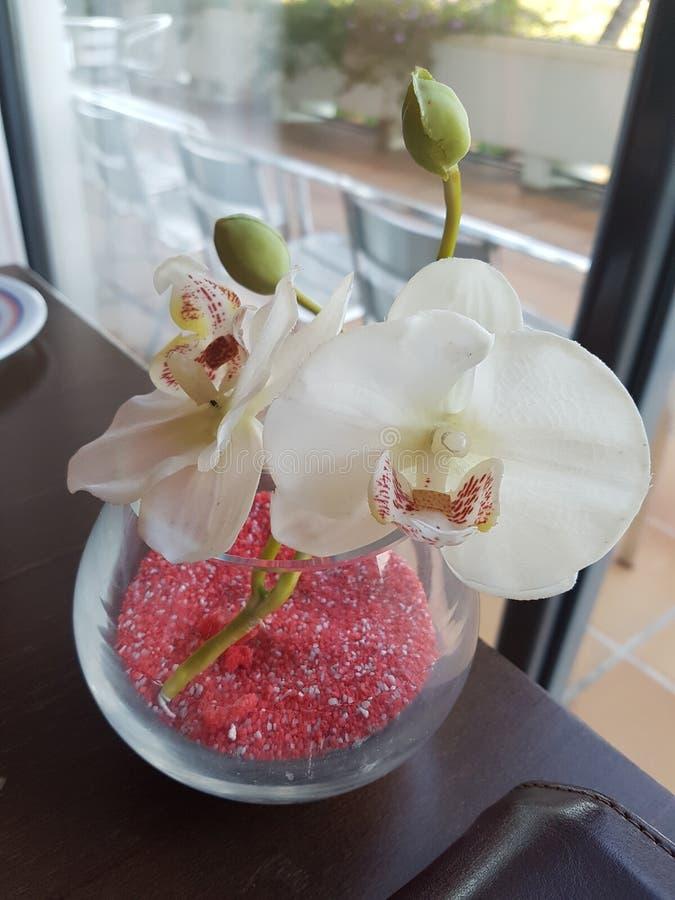 Künstliche Orchidee stockfotos