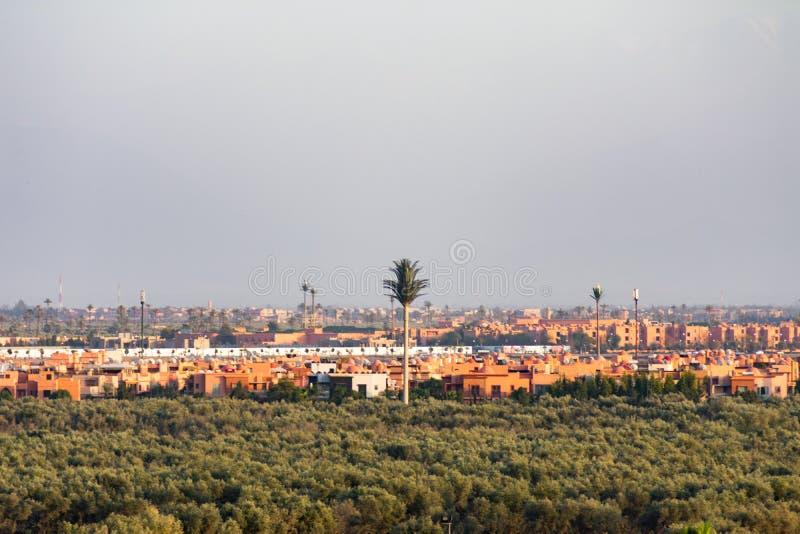 Künstliche Palme umgeben durch Bäume und Gebäude in Marrakesch Marokko stockbild