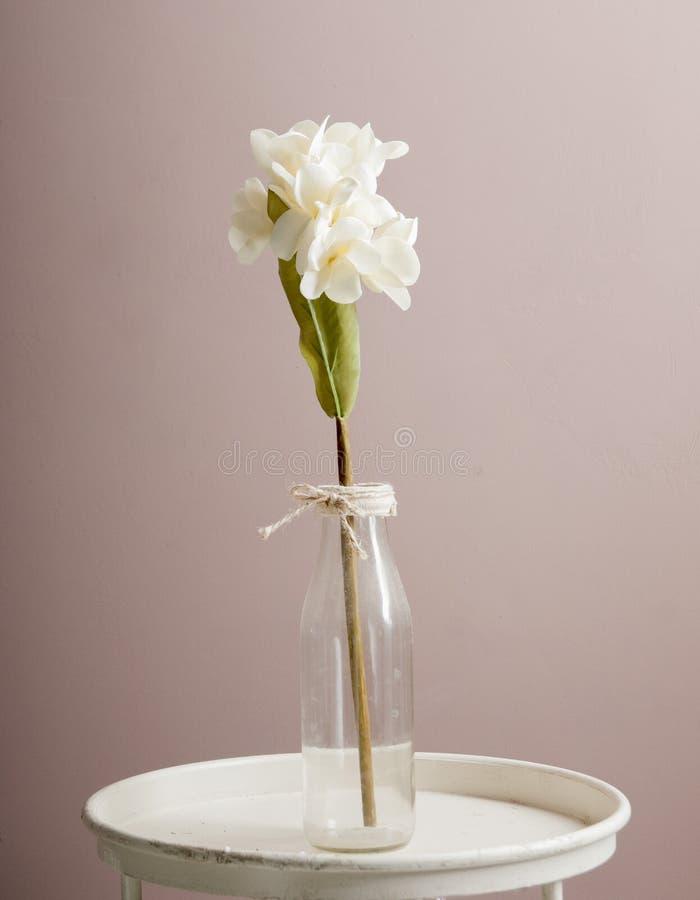 Künstliche weiße Orchidee in einer Glasflasche stockbild