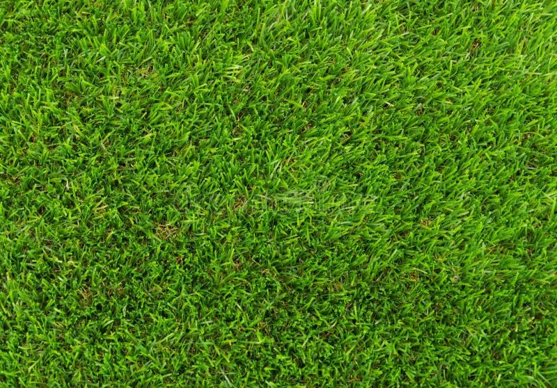 Künstlicher Grasplastik cesped stockfoto