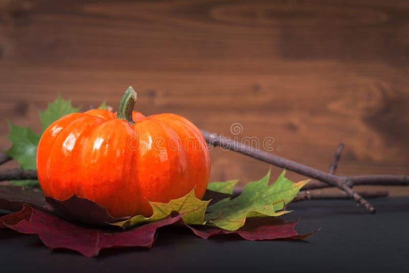Kürbis auf Herbstlaub auf schwarzem Schieferstein und Holzhintergrund für Jahreszeit oder Halloween-Feiertagshintergrund lizenzfreie stockfotografie