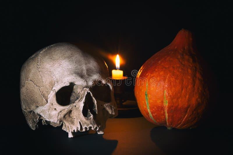 Kürbis, frequentiertes Haus und Hiebe gegen Vollmond Menschlicher Schädel nahe Halloween-Kürbis mit brennender Kerze auf Hintergr lizenzfreie stockfotos