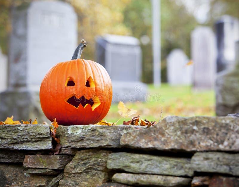 Kürbis im Friedhof mit Blättern stockfotografie