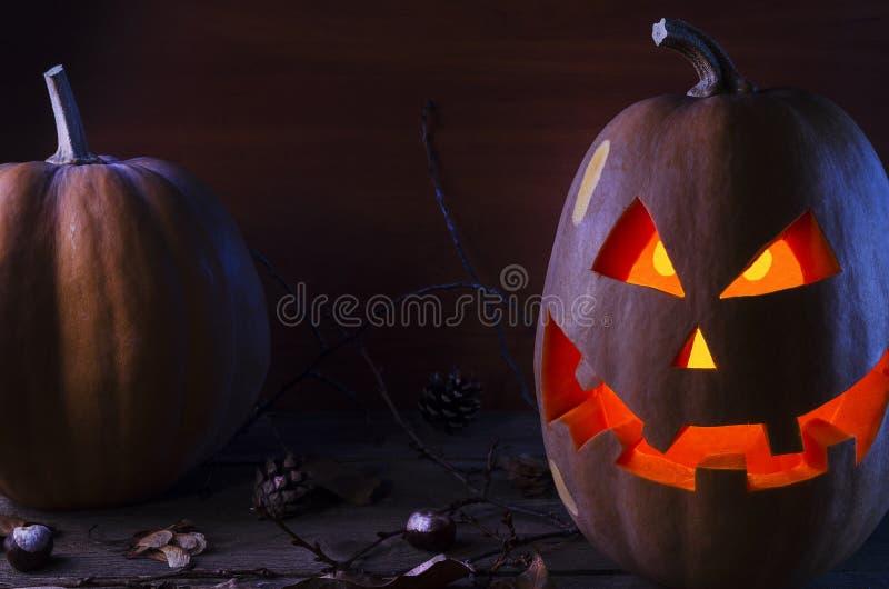 Kürbis im Netz und Spinnen auf dem Hintergrund des Baums für Halloween 2 lizenzfreies stockbild