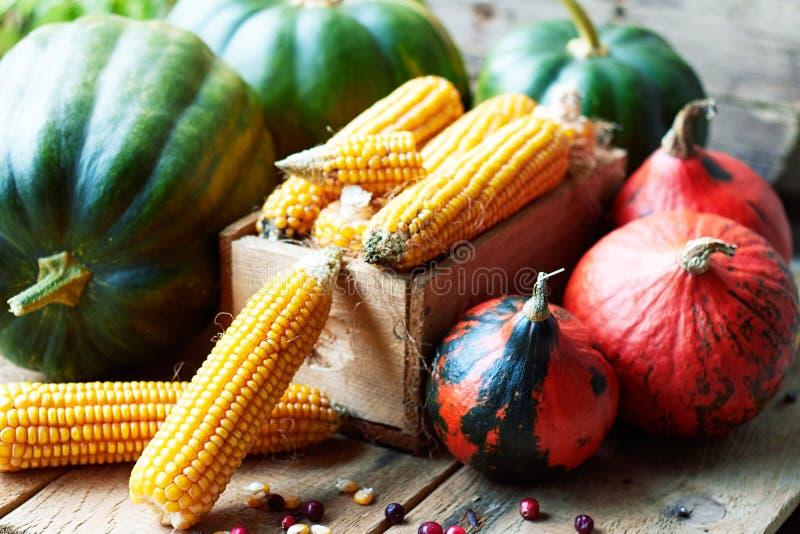 Kürbis, Mais- und Cranberry-Beeren stockfotografie