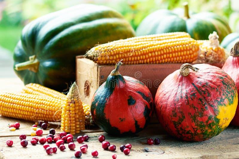 Kürbis-, Mais- und Moosbeerbeeren stockfotografie