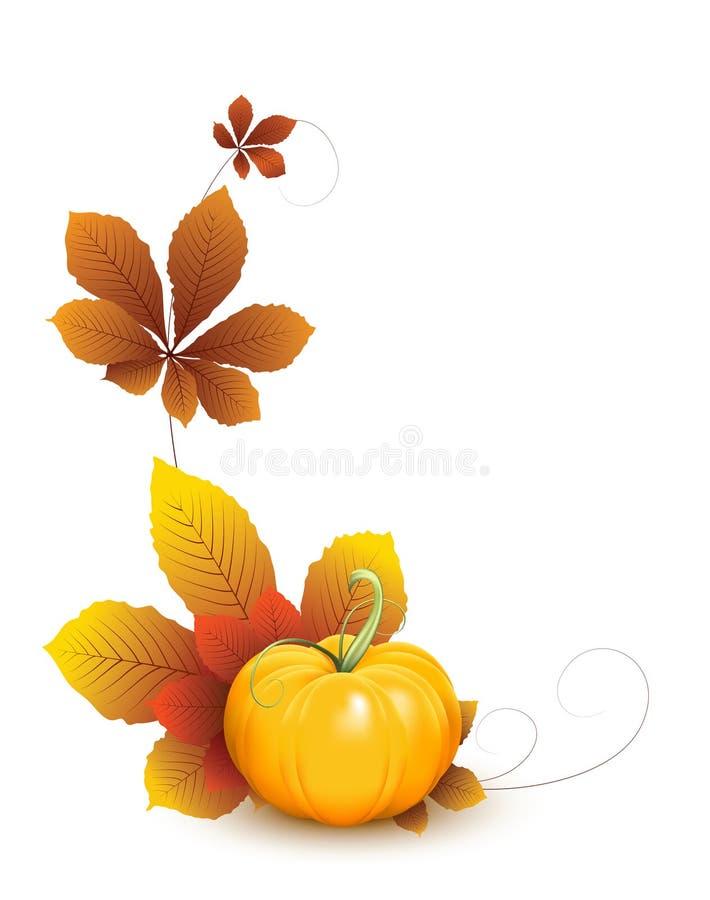 Kürbis mit Herbstblättern vektor abbildung