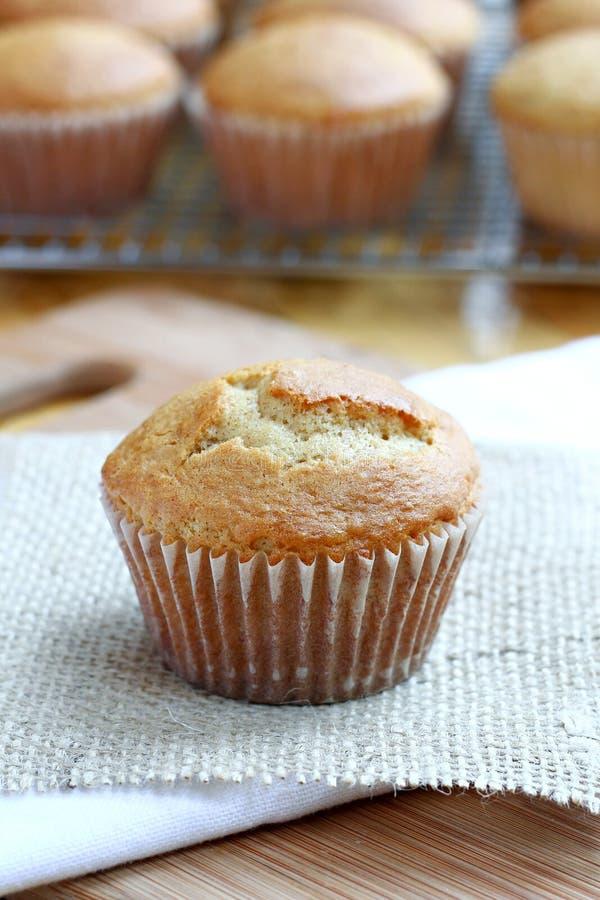 Kürbis-Muffin lizenzfreies stockfoto