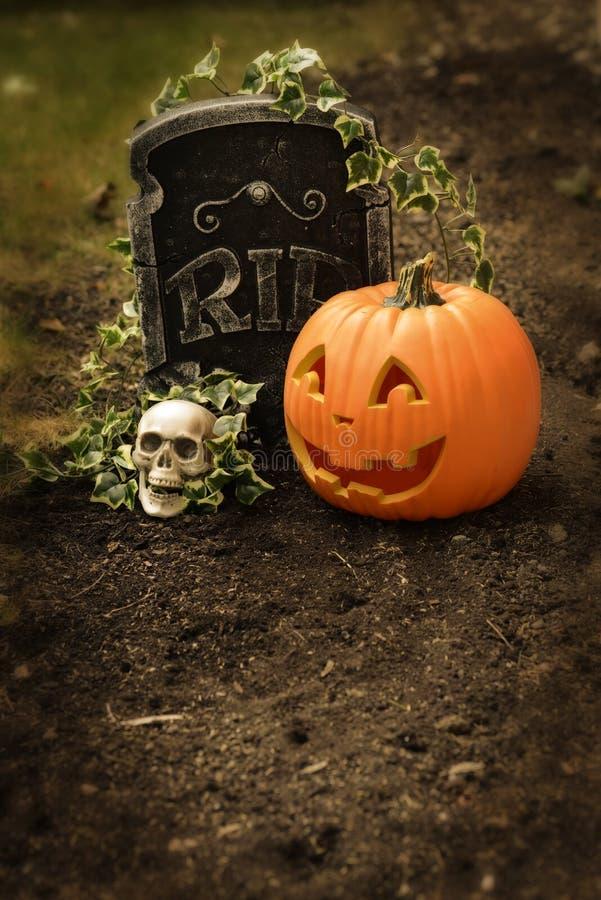 Kürbis und Schädel am Grab stockbilder