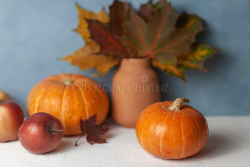 Kürbise Äpfel Ahornblatt getrennt Herbst Nochlebensdauer ernte stockfotografie