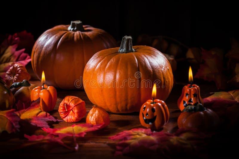 Kürbise für Danksagung und Halloween stockbilder