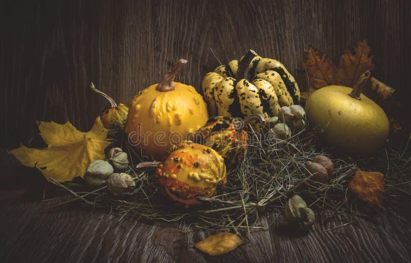 Kürbise mit Herbstlaub und Heu stockfotos