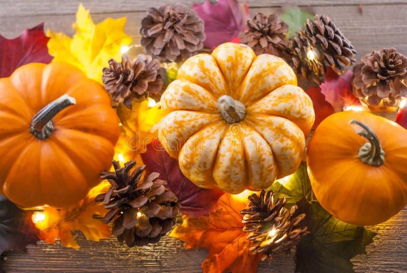 3 Kürbise umgeben durch die roten, orange, gelben, grünen Blätter, die Kiefernkegel und kleines lightson ein hölzerner Hintergrun lizenzfreies stockbild