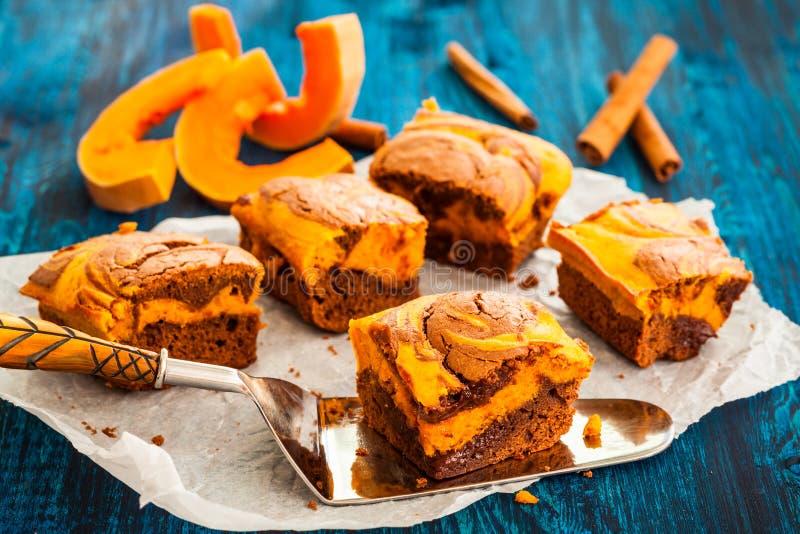 Kürbisschokoladenkuchen stockbild