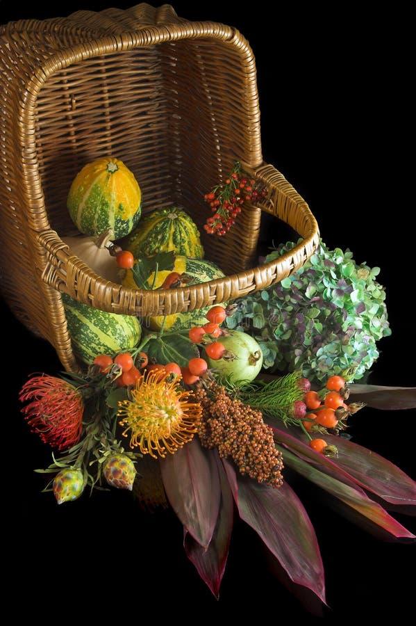Kürbisse, Beeren und Blumen lizenzfreie stockbilder