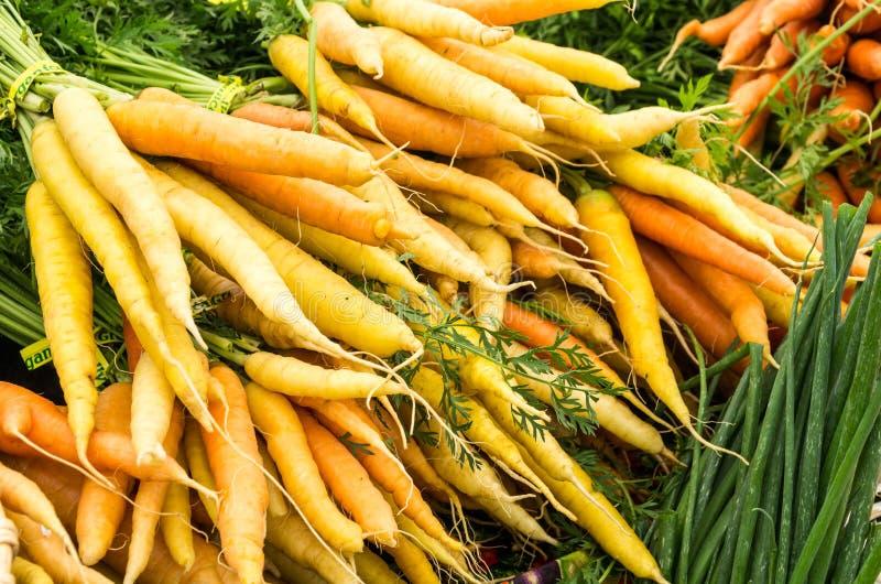 Kürzlich geerntete orange Karotten auf Bildschirmanzeige lizenzfreie stockfotos