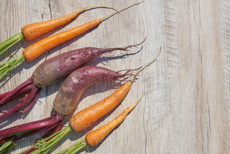 Kürzlich geerntete selbstgezogene organische Rote-Bete-Wurzeln und Karotte auf Holztisch Draufsicht, Kopienraum lizenzfreie stockfotos