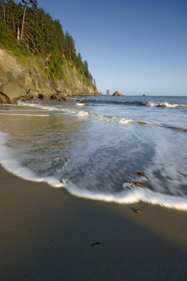 Küste 208 lizenzfreie stockfotografie