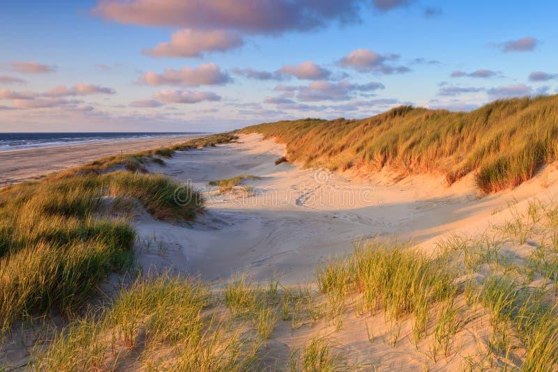 Küste mit Sanddünen am Sonnenuntergang lizenzfreies stockfoto