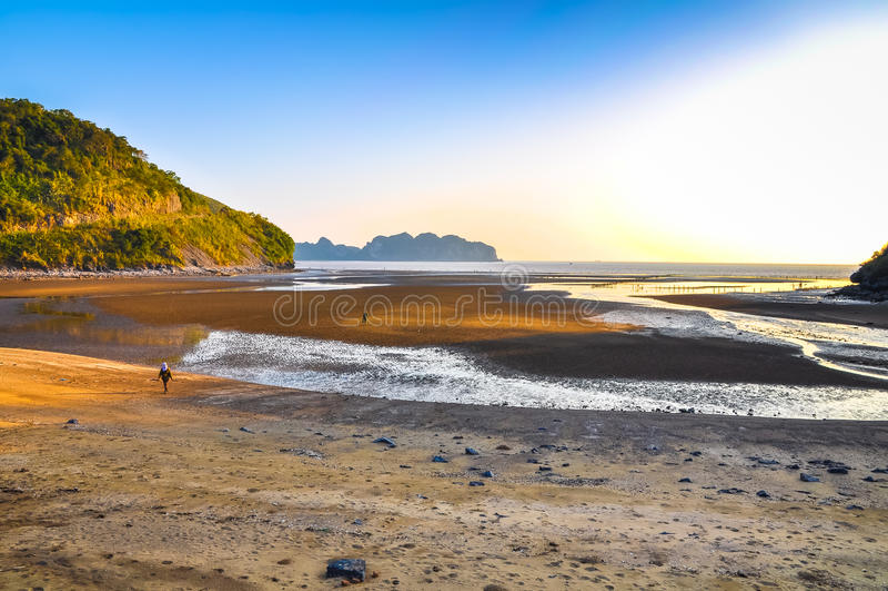 Küste von Cat Ba Island während der Ebbe lizenzfreie stockfotografie