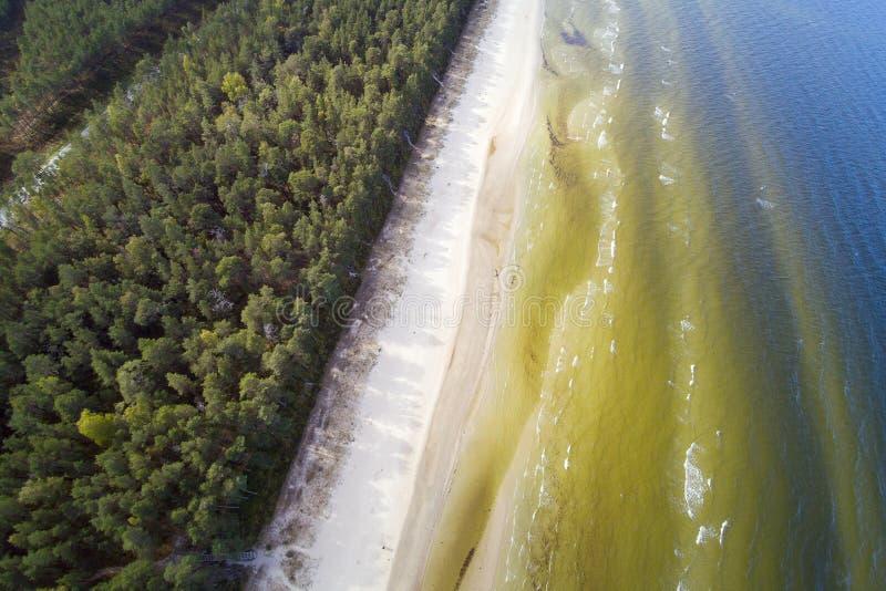Küste von Ostsee, Lettland stockbild