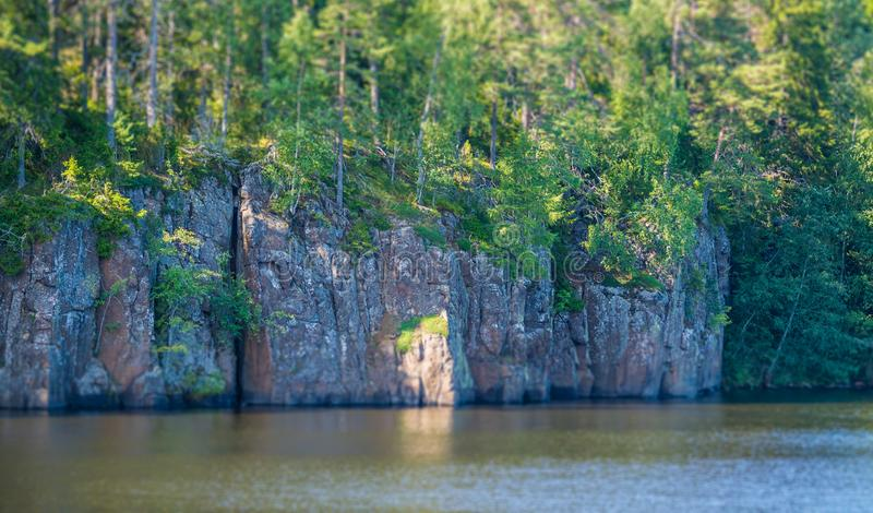 Küstenfelsen mit Wald badeten in der Sonne Kippen-verschieben Sie Effekt lizenzfreie stockfotografie