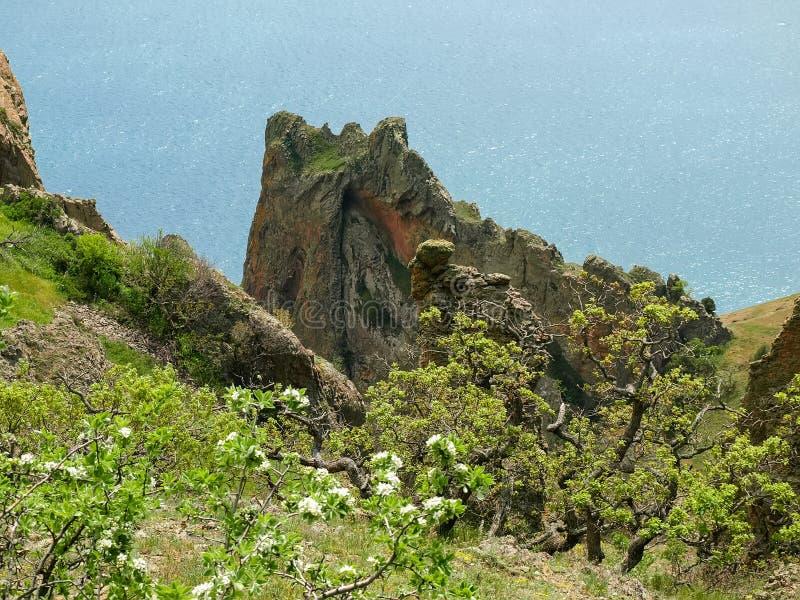 Küstenklippen des vulkanischen Ursprung gegen das Meer stockbilder