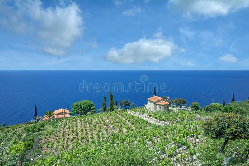 Küstenlandschaft, Insel Elba, Italien stockfotos