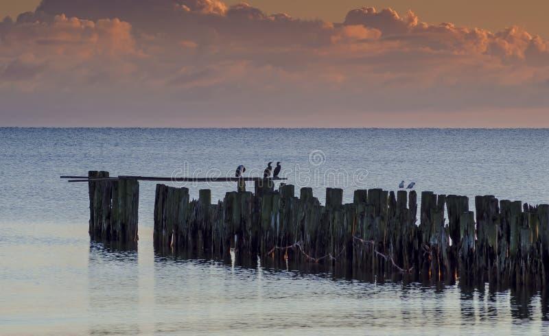Küstenlandschaft mit Überresten des alten gebrochenen Piers, Ostsee lizenzfreies stockfoto