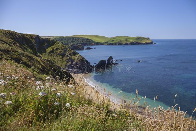 Küstenlinie durch Hoffnungs-Bucht, Devon, England lizenzfreie stockbilder