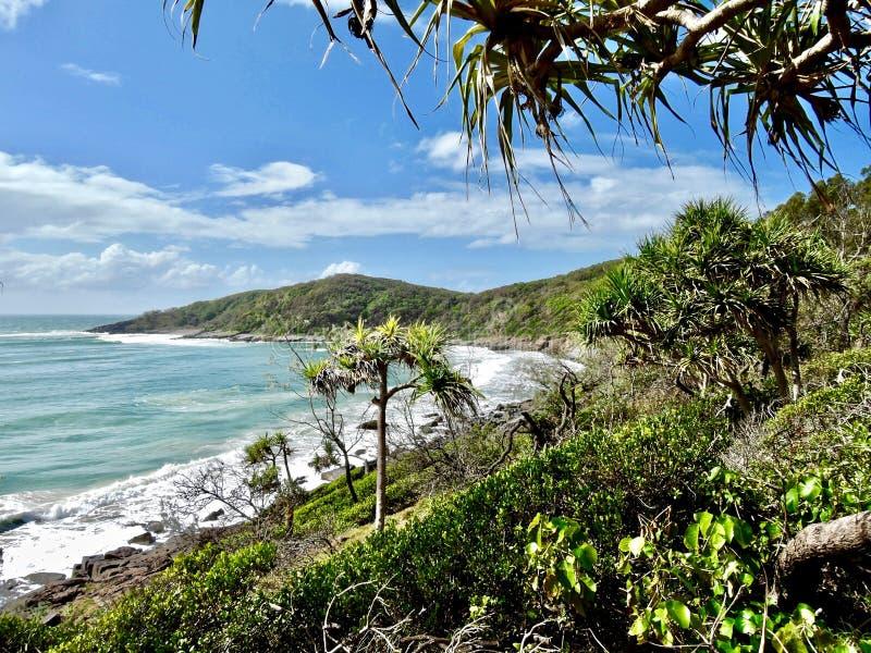 Küstenlinie durch Noosa geht Australien voran lizenzfreie stockfotografie