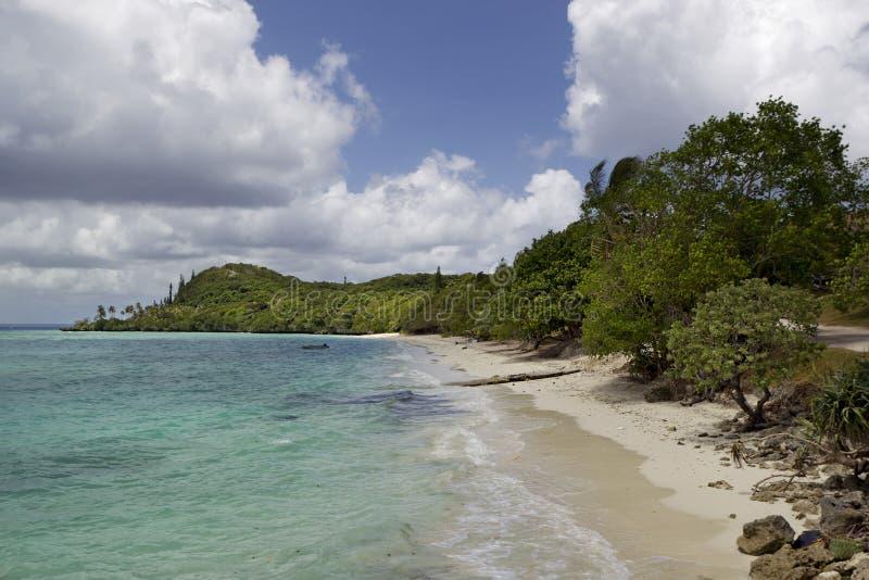 Küstenlinie Lifou- neues Caladonia lizenzfreies stockfoto