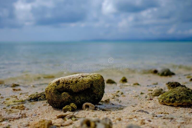 Küstenlinie von Taketomi-Insel stockfoto