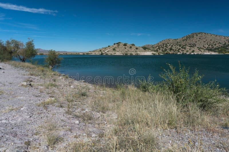 Küstenlinienbürste bei Bill Evans Lake im New Mexiko stockbilder