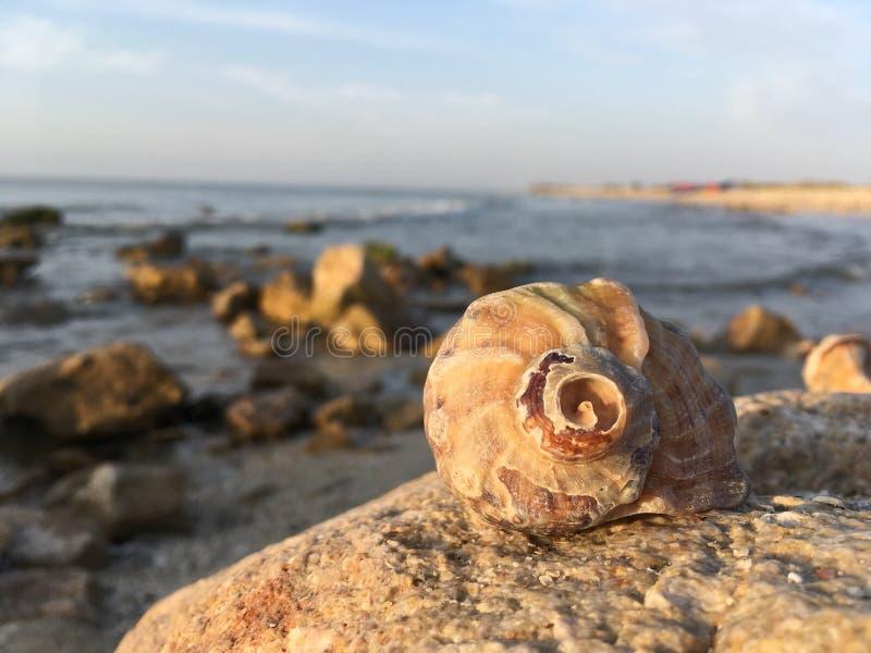 Küstenoberteil morgens lizenzfreie stockbilder