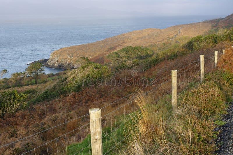Küstenweg der wilden atlantischen Weise, Irland stockfotografie