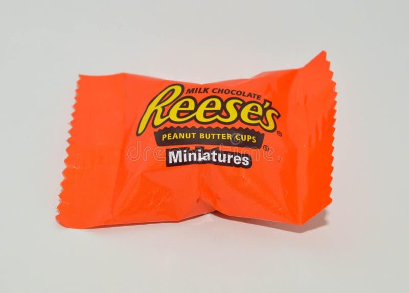 Kąsek wielkościowe porcje jeden dojnej czekolady Reese ` s masła orzechowego filiżanki miniaturyzują obraz stock