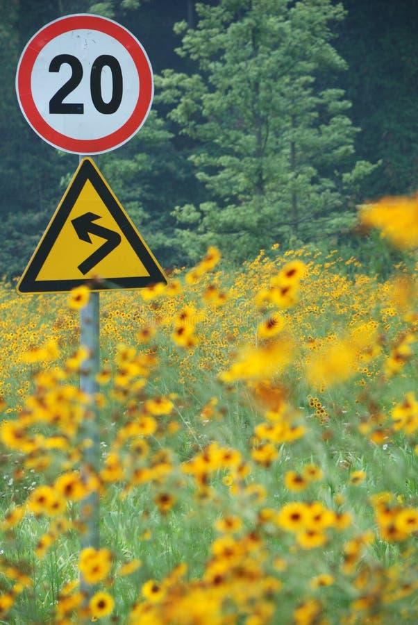kąta błękitny drogowego znaka odcienia widok szeroki zdjęcie royalty free