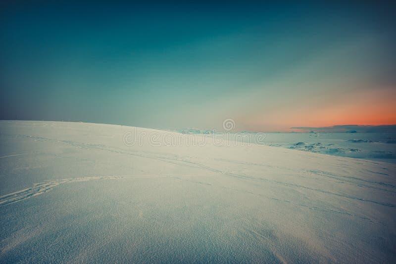 Kędzierzawy ślad narty na śniegu obraz royalty free
