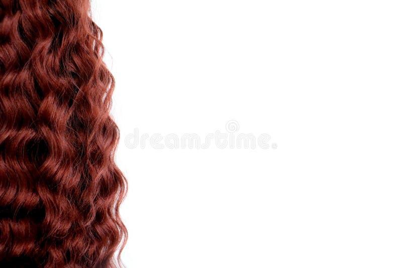 Kędzierzawy kasztanowy włosy odizolowywający na białym tle odizolowywającym obrazy royalty free
